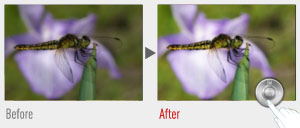 Image correction can be done in-camera after you have taken the shot