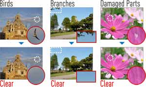 In-camera photo editing to remove unwanted elements of your picture