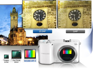 Reality in detail with 20.3 Megapixel APS-C Sensor