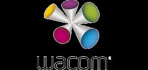WACOM Intuos Pro L