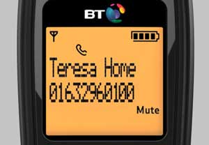 The BT1000 has type II caller display, so you'll always know who's calling
