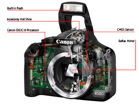 Canon's CMOS senser and DIGIC III processor combine perfectly in the EOS 450D