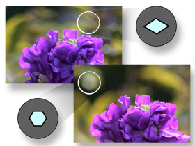The hexagonal Lens diaphragm creates a  more pleasing 'bokeh' effect.
