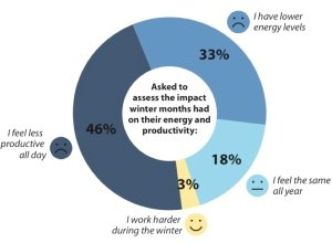 79% of people are less productive or less energised in winter