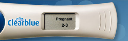 Clearblue Digital Pregnancy Test Kit With Conception Indicator indicates 2-3 weeks pregnant