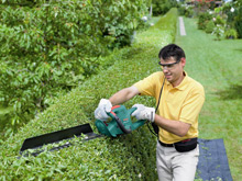 The Bosch AHS 7000 has been ergonomically designed to make trimming hedges easier