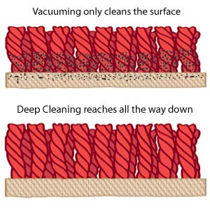 Only Deep Cleaners reach all the way down your carpet