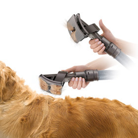 Mess free vacuum assisted dog grooming