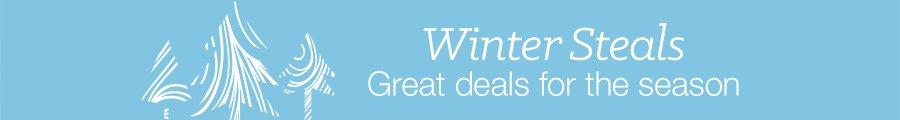 Winter Steals