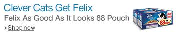 Felix 88