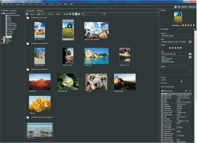 The Organizer simplifies photo management