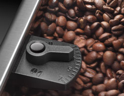 Integrated burr grinder