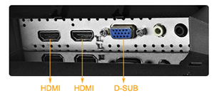 Rich connectivity options, including Dual HDMI and D-sub