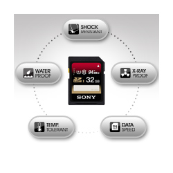 Sony 8GB Class 10 UHS-1 Secure Digital SDHC Memory Card