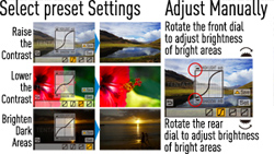 Preset or manual dynamic range control