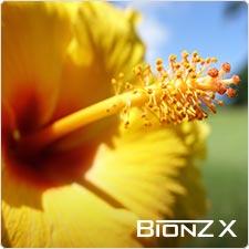 Groundbreaking new BIONZ X