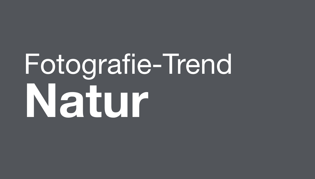 Fotographie Trend Natur