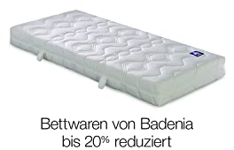 Aktion Badenia