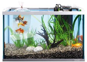 Tetra SafeStart mit lebenden Bakterien ermöglicht das schnelle Einsetzen von Fischen