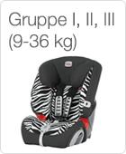 Gruppe 1, 2, 3 (9 - 36 kg)