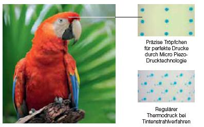 Die Epson Micro Piezo-Drucktechnologie
