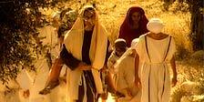 Das Bibelrätsel (2 Disc Set)