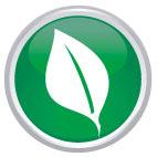 Logo CAVIAR Green Serie