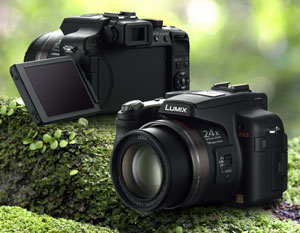 Panasonic Lumix DMC-FZ100EGK