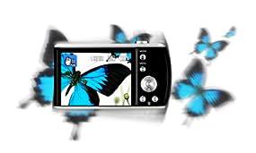Digitale Bildstabilisation
