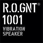 VIBSPEAK-1001 Lautsprecher