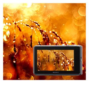 Prenez des photos et des vidéos d'une grande netteté, même à l'intérieur ou par faible luminosité