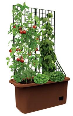 bio green grbx grow box mit rankgitter und. Black Bedroom Furniture Sets. Home Design Ideas