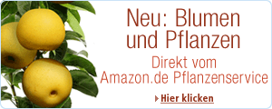 Neu bei Amazon.de - Lebende Pflanzen geliefert in 24 Stunden