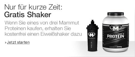 Gratis Shaker