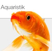 Restposten Aquaristikbedarf
