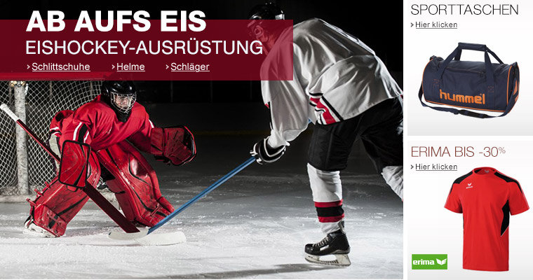 Eishockey Teamsport