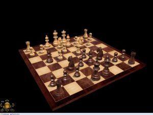 Profi Schach 5, Abbildung #05