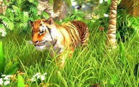 Wildlife Park 3, Abbildung #01