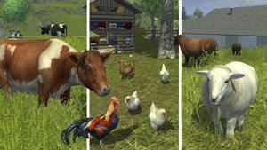Landwirtschafts-Simulator 2013 – offizielles Add-on, Abbildung #06