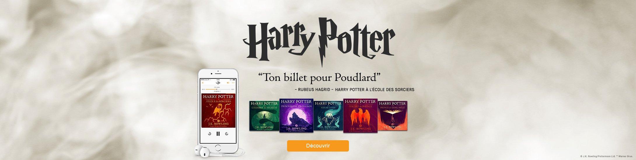 """Harry Potter, """"ton billet pour Poudlard"""""""