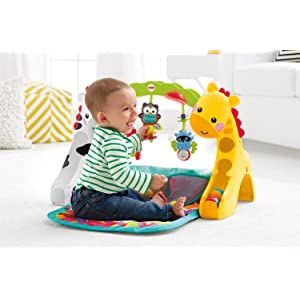 Fisher Price Tapis Evolutif B B S Pu Riculture