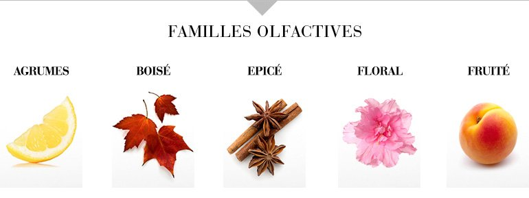 Familles olfactives