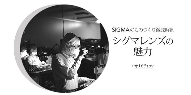 SIGMA_Craftman