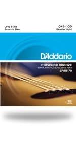 Phosphor Bronze Wound