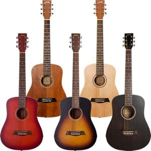 Compact-Acoustic Series YM-02