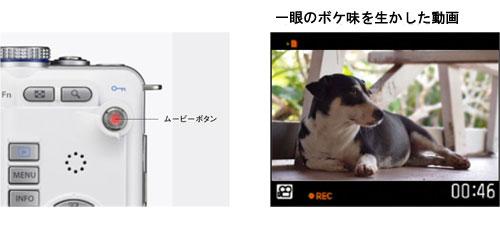 オリンパスPEN E-PL1(PEN Lite)の動画品質・動画撮影専用ボタン