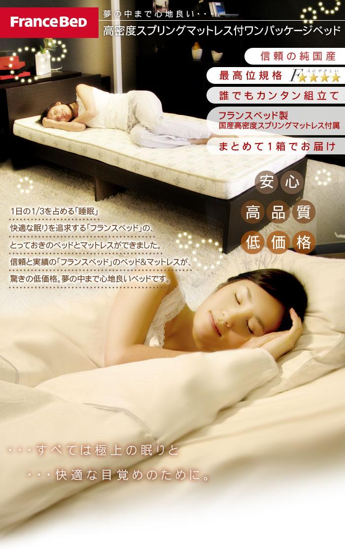 フランスベッド 高密度スプリングマットレス付きワンパッケージベッド ASパックインワン WE (ウエンジ色) 3311