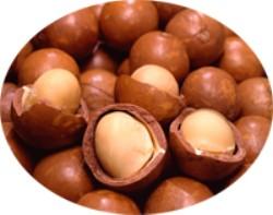 マカデミアナッツ油の特性と用途