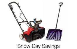 Snow Day Savings