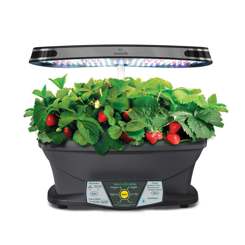 Indoor herb garden kits amazon for Indoor gardening amazon